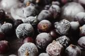 Frozen black currant — Stock Photo