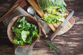 Cooking salad chinese cabbage — Stock Photo