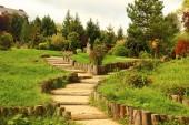 Ścieżki w parku — Zdjęcie stockowe