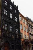 Lviv History Museum — Zdjęcie stockowe