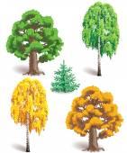 Trees in summer and autumn — Stok Vektör
