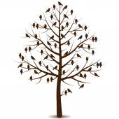 Birds on branches of tree — Stock Vector