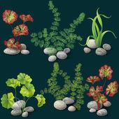 Algae set  on dark  background — Stock Vector