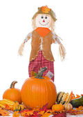 Scarecrow with Pumpkins and Squash — Stock Photo