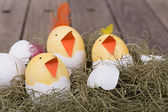 Three Easter Egg Chicks — Stock Photo
