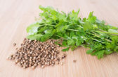 Coriander Leaves And Seeds - Cilantro - Fresh coriander leaves a — Stock Photo