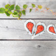Green ivy vine and two hearts shape forming from four pieces of — Stock Photo #63434101