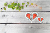 Green ivy vine and two hearts shape forming from four pieces of  — Stock Photo