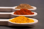 Turmeric, tandoori and garam masala — Stock Photo