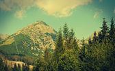 Tatra mountains near Kezmarok — Stockfoto