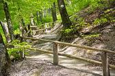 Tourist path — Stock Photo