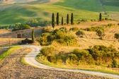 Gorgeous and full of serenity landscape of Tuscany, Italy — Stock Photo