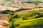 Rural landscape of green Tuscan, Italy — Stock Photo