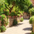 The entrance to the house in flowers and vegetation in Pienza, T — Stock Photo #52548701