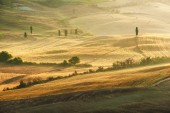 Beautiful light of the morning sun in the Tuscan landscape — Stock Photo