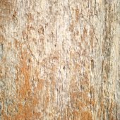 Old patterns of nature on wood, texture — Stock fotografie