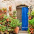 Door in the alley of the old Tuscan town, Italy — Stock Photo #55324453