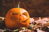 Frightening Halloween pumpkin on leaves — Stock Photo