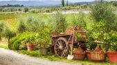 Places around the vineyards — Stock fotografie
