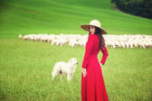 Beautiful woman in a field between the Tuscan sheep — Stock Photo