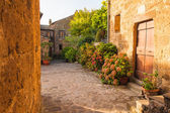 Mała aleja w toskańskiej miejscowości — Zdjęcie stockowe