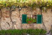 Windows and doors in the Tuscan town — Stock Photo
