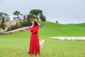 Beautiful woman in a field between the Tuscan sheep — Stockfoto
