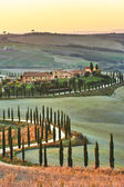 Cypress Tuscany in the beautiful landscapes of the setting sun. — Stock Photo
