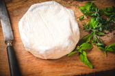Smelly blue cheese on a wooden rustic table with knife and basil — Stock Photo