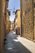 Old streets of greenery a medieval Tuscan town. — Stock fotografie