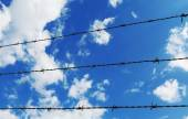 Barbed wire fence with white clouds and blue sky background — Foto Stock