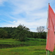 Pink and yellow flag with green natural grass land and blue sky background — Stock Photo #56310027