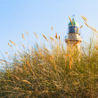 Beach Grass and Lighthouse in the Sunlight — Stock Photo #66189557