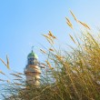 Beach Grass and Lighthouse in the Sunlight — Stock Photo #66189603