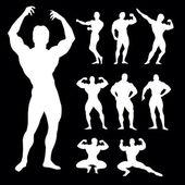 Bodybuilders silhouette — Stock Vector