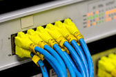 Ethernet switch isolated and router connect Lan colorful — Stock Photo