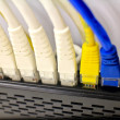 Close-up of computer network plugs connected to a router switc — Stock Photo #59207191