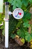 Soil Water Tension (Tensiometers) — Stock Photo