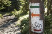 Poland, Gorce Mountains, trail blazing marks — Stock Photo