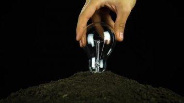 Screw Light Bulb Energy Conservation  Soil — Stock Video