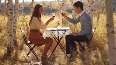 Romantic Picnic on nature — Stock Video