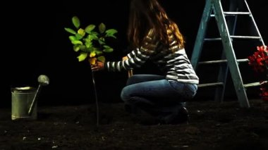 Woman planting a tree — Stock Video