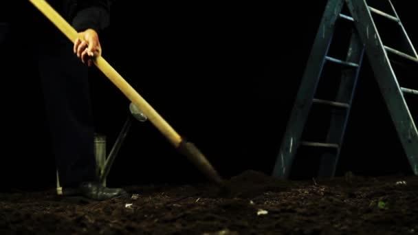 Mujer plantando un árbol — Vídeo de stock