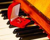 Anéis de casamento — Foto Stock