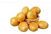 картофель — Стоковое фото