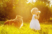 Little girl and dog — Stock Photo