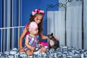Little cute sisters and sphinx cat — Stockfoto