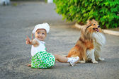 Little girl and dog sitting on the ground. — Stock Photo