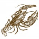 Engraving woodcut illustration of crayfish on white background — Stock Vector #60472647