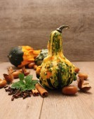 Squash and spice — Stock Photo